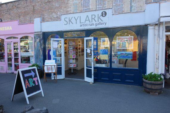 Skylark One