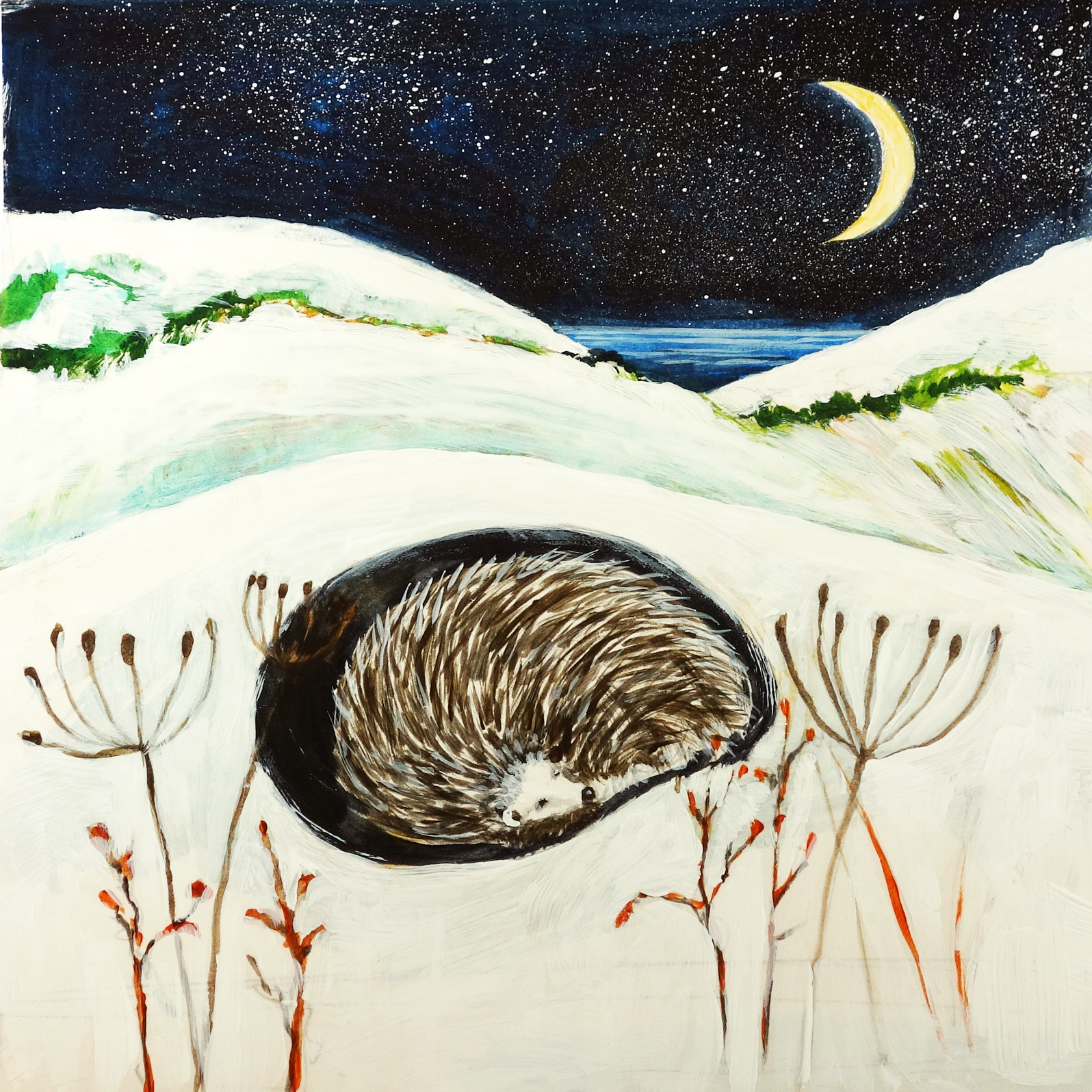 WINTER HEDGEHOG by Fran Slade