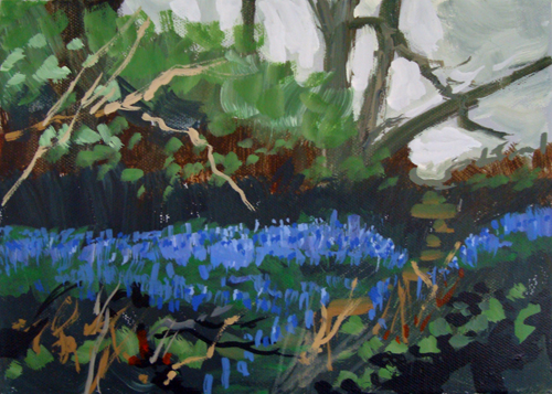 BLUEBELLS by Colin Ruffell