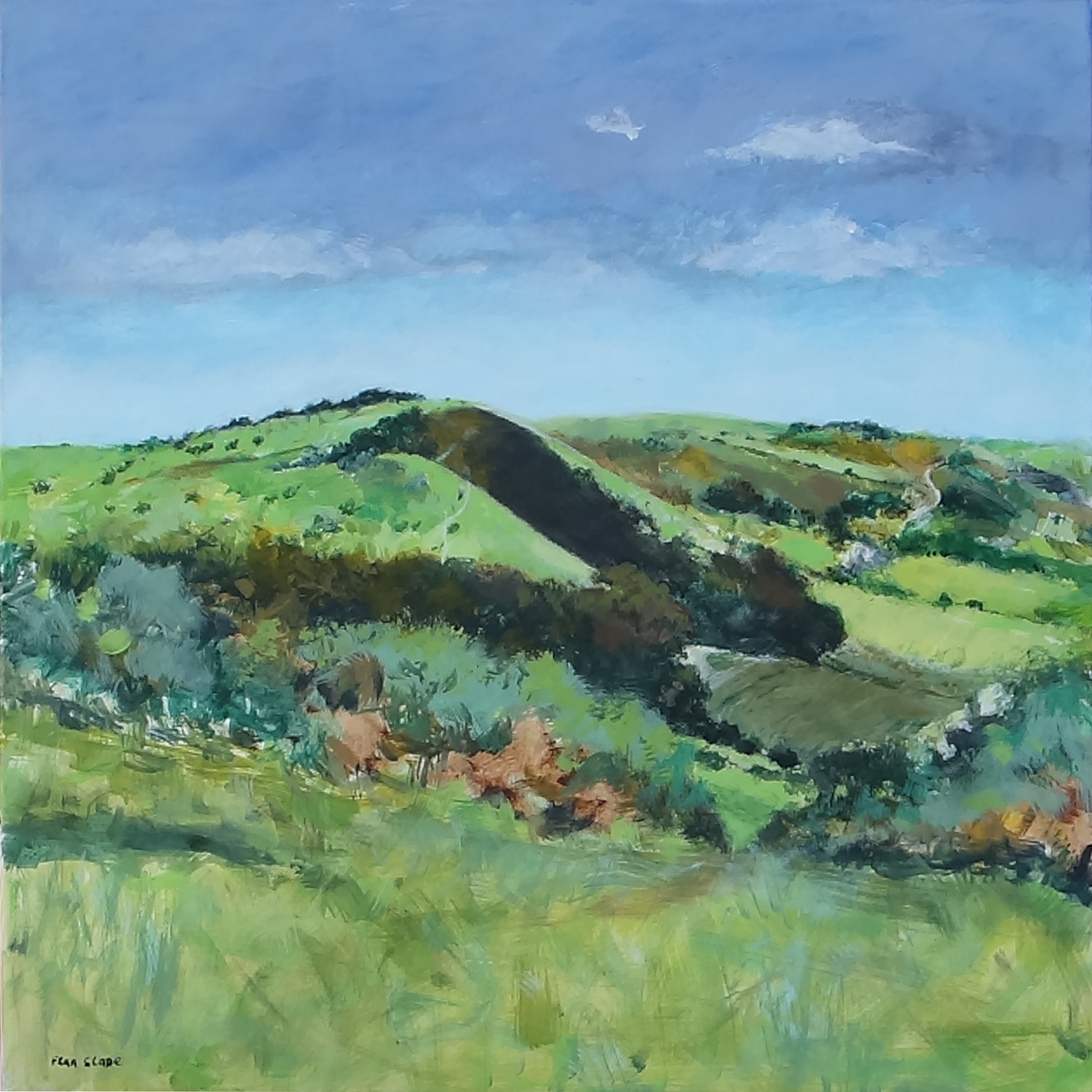 SCARP SLOPE by Fran Slade