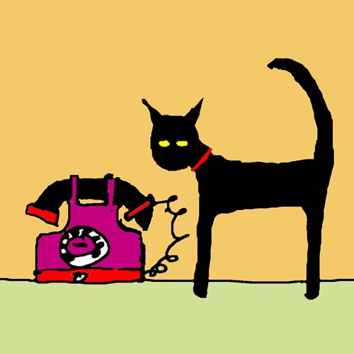 CAT AND PHONE CARD