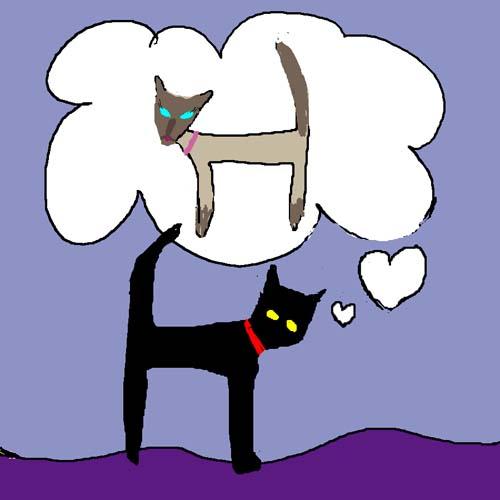 CAT IN LOVE card