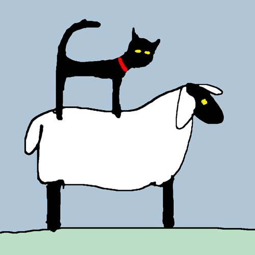CAT ON SHEEP card