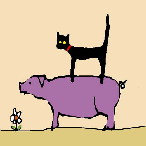 CAT ON PIG card