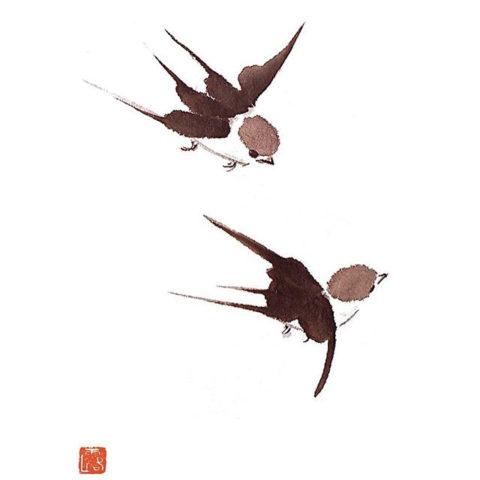 Talia-LeHavi-4-Swallows-iv