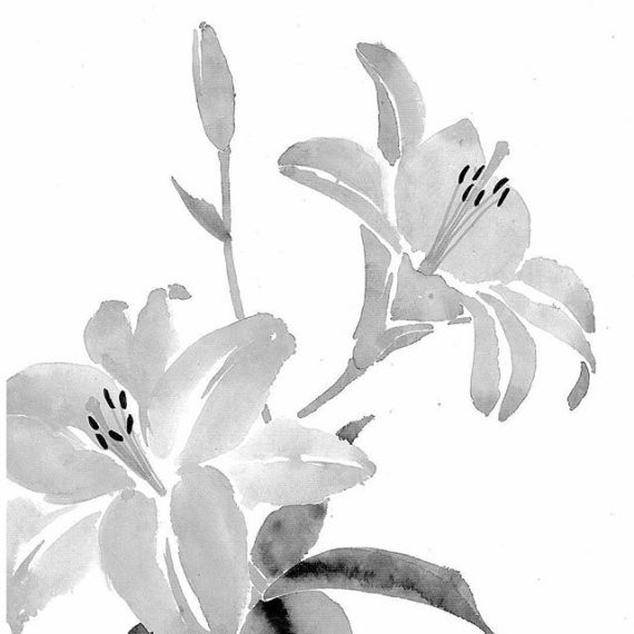 Talia-LeHavi-5-White-Lillies